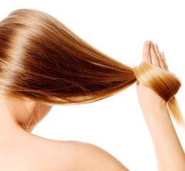 przeszczep włosów cena